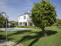 Luxury villa in Limassol with 7 bedrooms, Moni